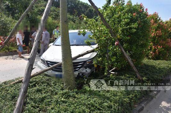 钦州:小车失控冲入隔离花带 因司机操作不当(图)