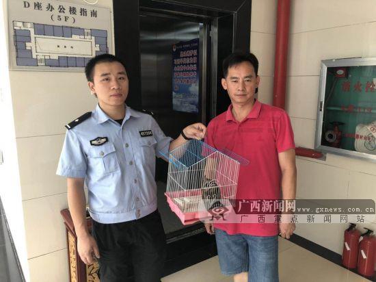 贺州:警民救助3只国家二级保护动物鸺鹠(图)
